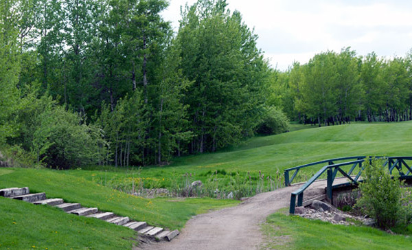fawn-meadows-golf-and-country-club-ladies